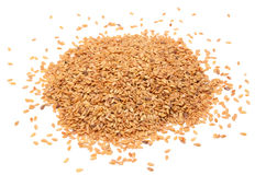 Golden linseed Stock Photography