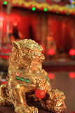 Golden Lion Stock Photos