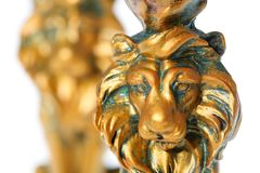 Golden Lion Stock Image