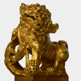Golden Lion Royalty Free Stock Photos