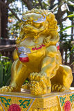 Golden Lion China Royalty Free Stock Image