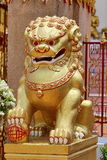Golden Lion for a Good Feng Shui Stock Image