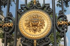 Golden lion medallion Royalty Free Stock Photography