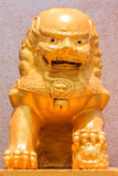 Golden Lion Sculpture. At Front of Chinese Temple Royalty Free Stock Photos