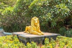 golden lion sculpture Stock Image