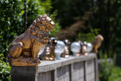 Golden lion statue. Colonade of golden and bronze concrete animal statues, presided by a lion, sits on a wall with a greenery background stock photo