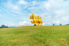 The golden lion statue on a field at chiang rai , Thailand royalty free stock photo