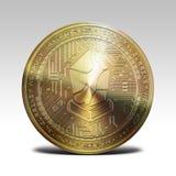 Golden lisk coin isolated on white background 3d rendering. Illustration Stock Photos