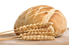 Golden loaf of bread Stock Photography