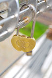 The golden lock. In the form of hearts Stock Photography