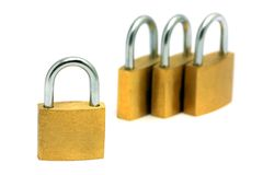 Golden Locks Stock Images