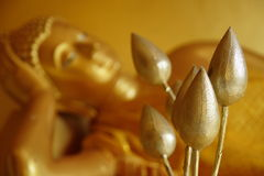 Golden lotus at front of Buddha statue Royalty Free Stock Photography