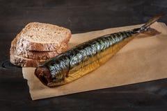 Golden mackerel Stock Image