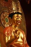 Golden maitreya buddha statue Stock Photos