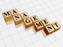Golden management. 3d golden boxes with text - management, word Royalty Free Stock Image