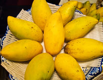 Golden Mangoes background. The mango is a fleshy stone fruit belonging to the genus Mangifera Royalty Free Stock Photo
