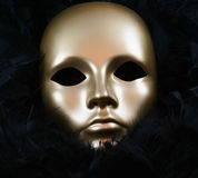 Golden Mask. Gold Mask against black feathers stock images