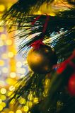 Golden matte Christmas decoration on the pine tree at night outdoors. stock photo