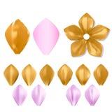 Golden metal pattern flower petal set Royalty Free Stock Photos