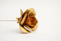 Golden metal rose Stock Image