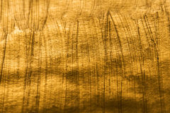 Golden metallic shinny textured background with detail pattern Stock Image