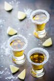 Golden mexican tequila shot with green lime and salt Royalty Free Stock Images