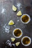 Golden mexican tequila shot with green lime and salt Stock Image