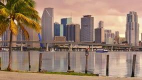 Golden Miami Skyline Stock Image