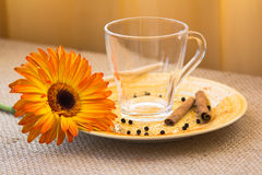 Golden milk drink preparation set Stock Photo