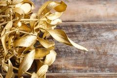 Golden mistletoe on wooden background Stock Images