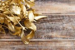 Golden mistletoe on wooden background Stock Photo