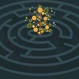 The golden money plant maze. Stock Images