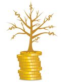 Golden money tree growing out from a coins Royalty Free Stock Photography