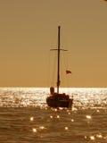 Golden morning Stock Image