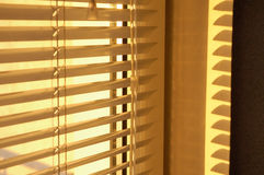 Golden morning. Morning sun glowing through the blind Royalty Free Stock Photography
