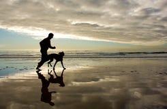 Golden morning beach coastline run Stock Image