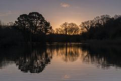 The golden morning light on the Ornamental Pond Southampton Common royalty free stock photos