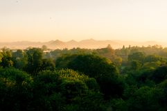 Golden morning shot of trees and buildings in the distance. Golden morning light shot of trees and buildings and hills in the distance seen through the fog. The royalty free stock photo