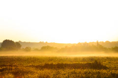 Golden morning sunrise over a misty field Stock Photography