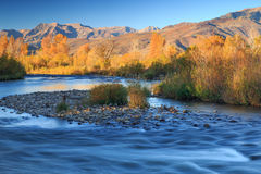 Golden morning in the Wasatch Mountains. Stock Photo