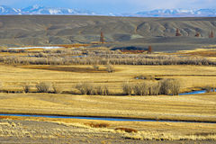 Golden Mountains of Altai Royalty Free Stock Image