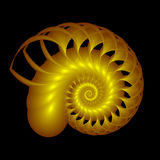 Golden Nautilus Stock Photo