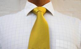 Golden neckwear. Neck tie & check shirt royalty free stock photos