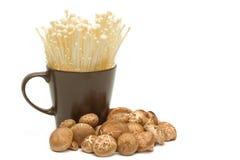 Golden Needle Mushroom and  shitake mushroom Stock Image