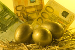 Golden nest Stock Photos