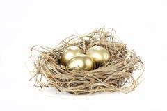 Golden nest egg. Gold nest eggs isolated on a white background Stock Photography
