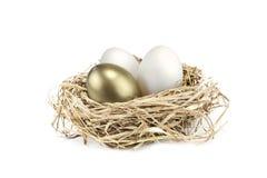 Golden nest egg. Golden egg growing amongst normal white eggs Royalty Free Stock Photos