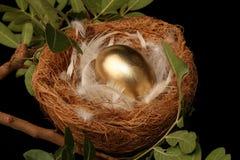Golden Nest Egg Royalty Free Stock Photo