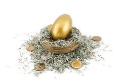 Golden Nest Egg. Golden egg sits in nest amongst shredded US paper bills and US dollar coins Stock Photo