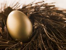 Golden Nest Egg. Close Up Of A Golden Nest Egg Royalty Free Stock Image